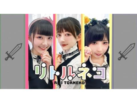 アイドルグループ「リトルネコ」新メンバーオーディション