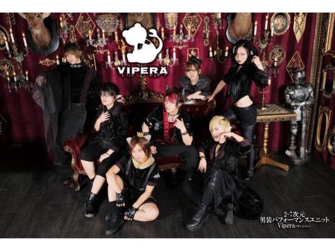 Vipera 追加メンバー募集