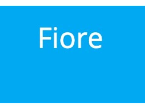 今勢いのあるアイドル「Fiore」新メンバー募集!