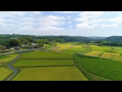 【栃木】地方自治体観光PR動画制作 モデル出演者募集